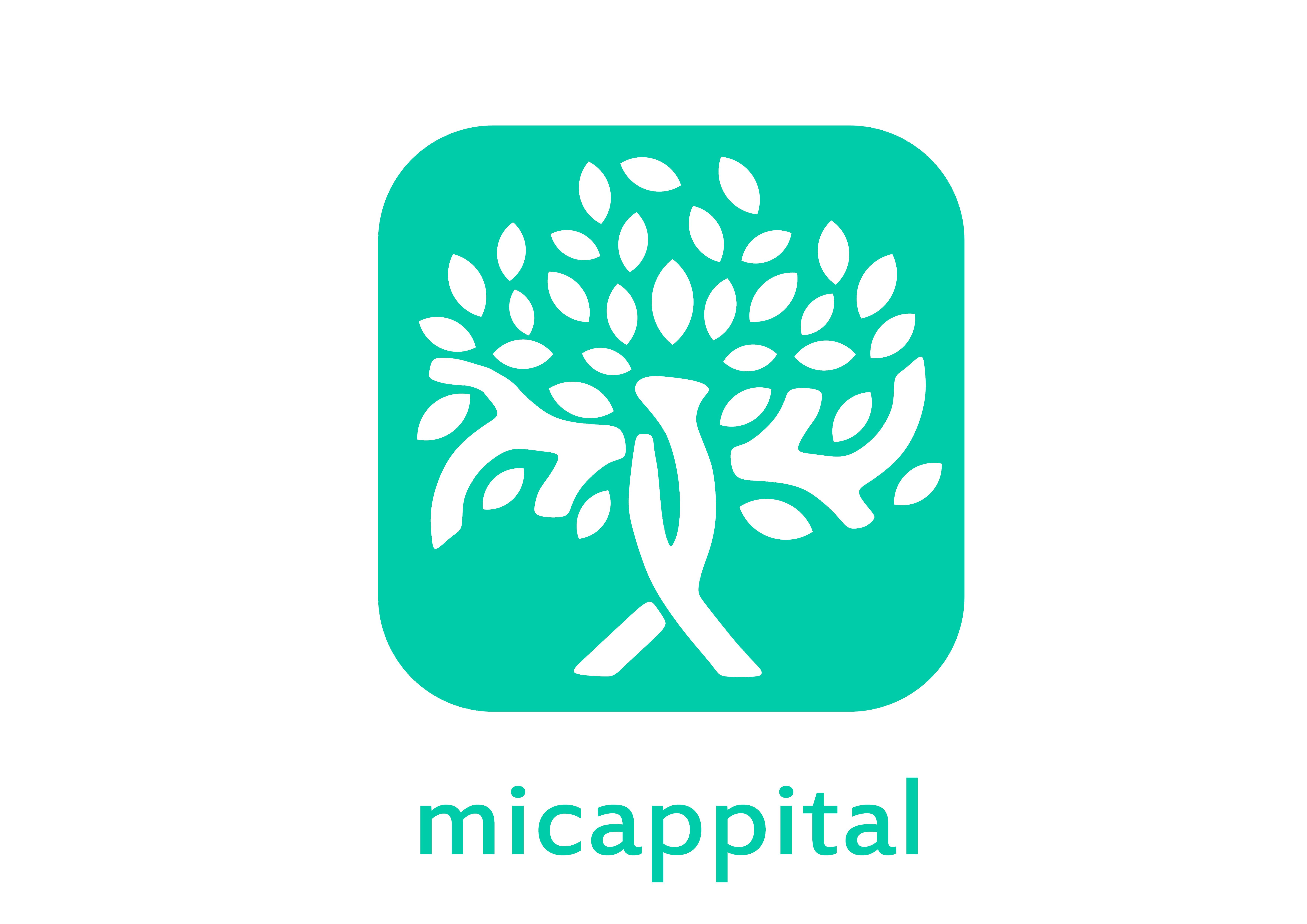 Micappital, logo